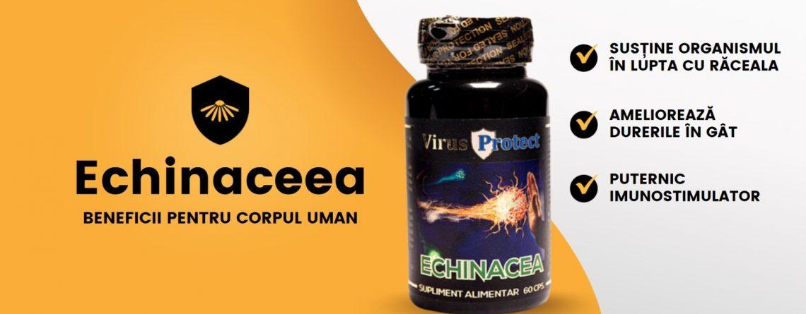 Echinaceea - Articol Virus Protect